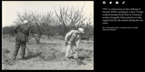 German Prisoners of War in a local orchard